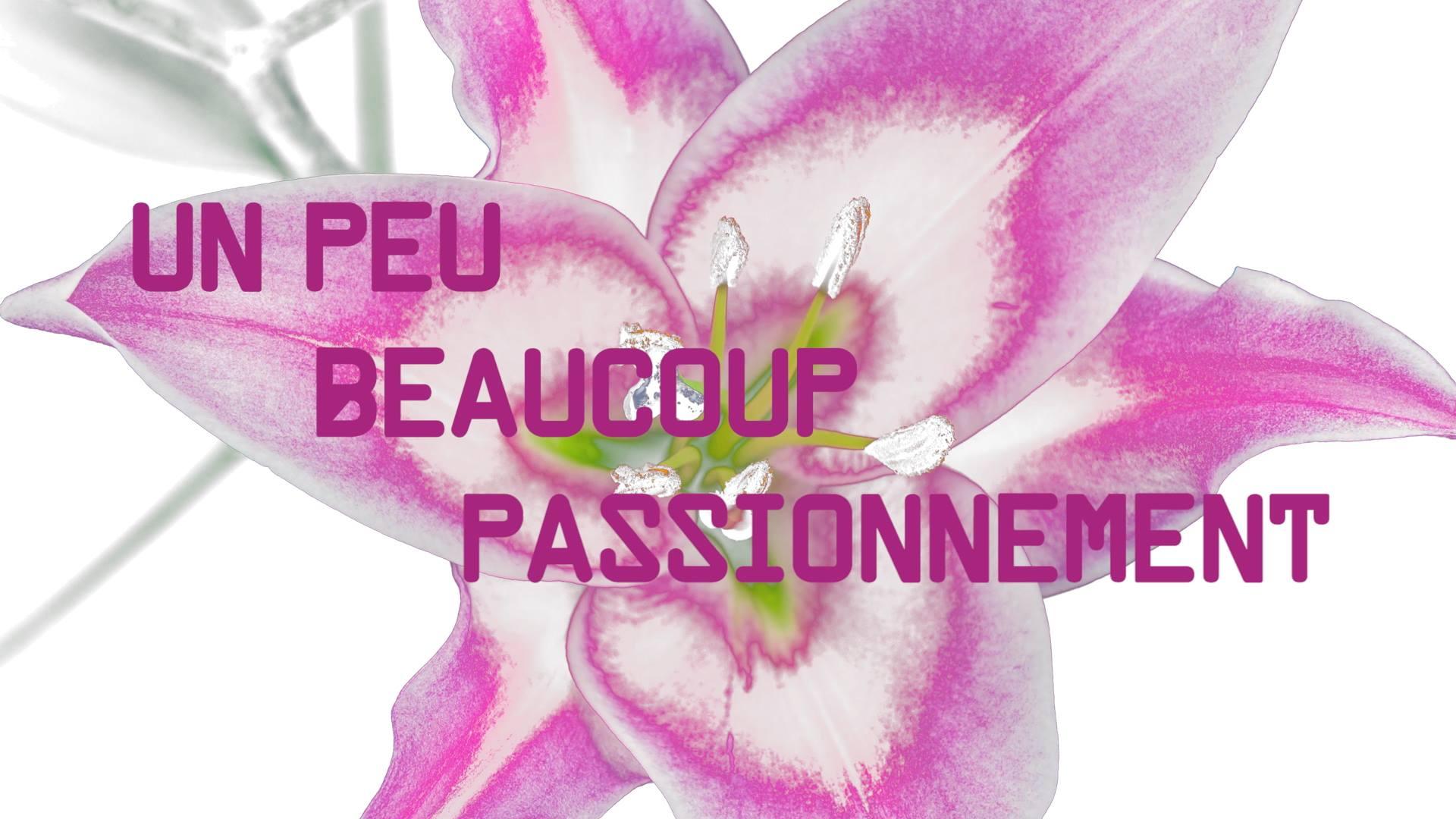 Présentation vidéo de Floriform, formation fleuristes avec Benoît Saint Amand, MOF
